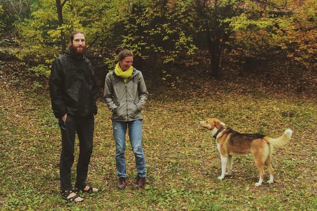 Француженка осталась в Алматы на несколько месяцев ради бездомной собаки (фото), фото-1