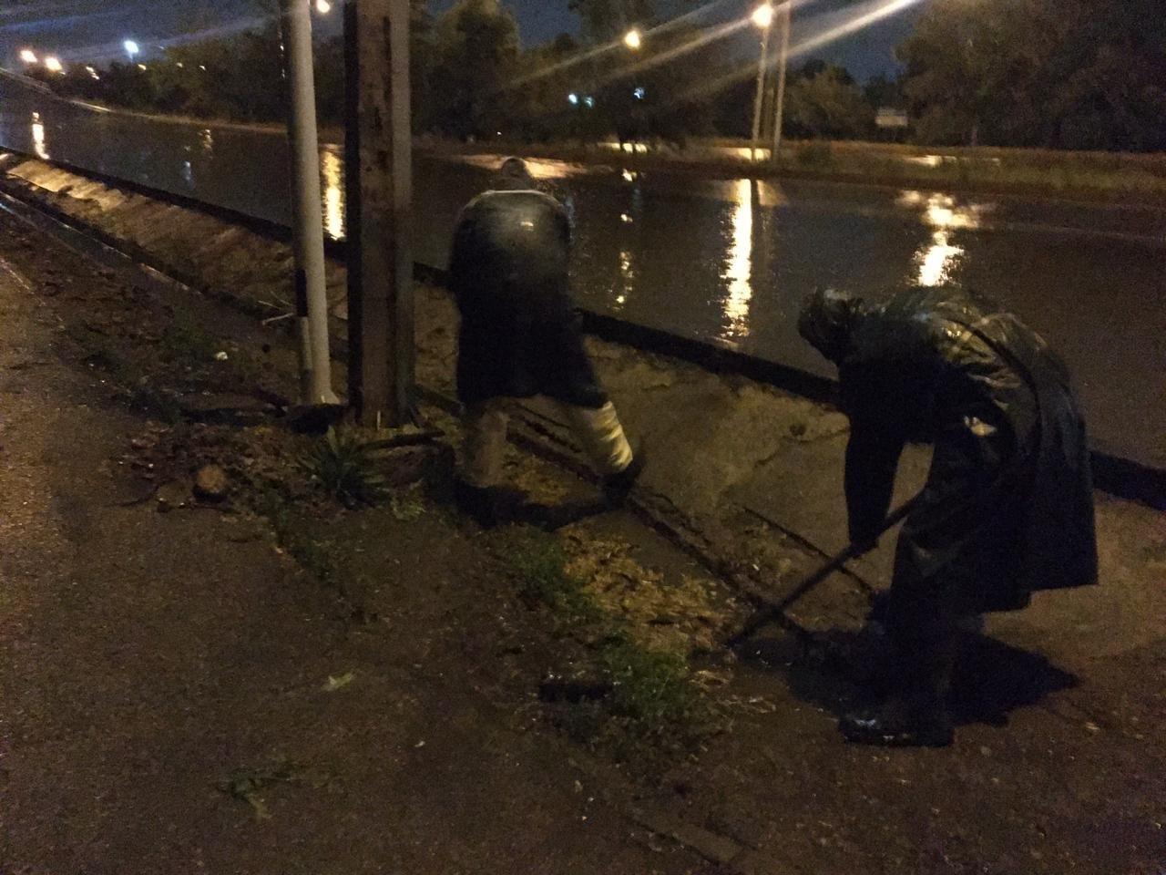В Алматы из-за ливня подтопило 21 участок и упали 19 деревьев. Видео, фото-2