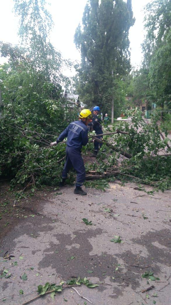 Упавшие ветки и деревья, Служба спасения 109
