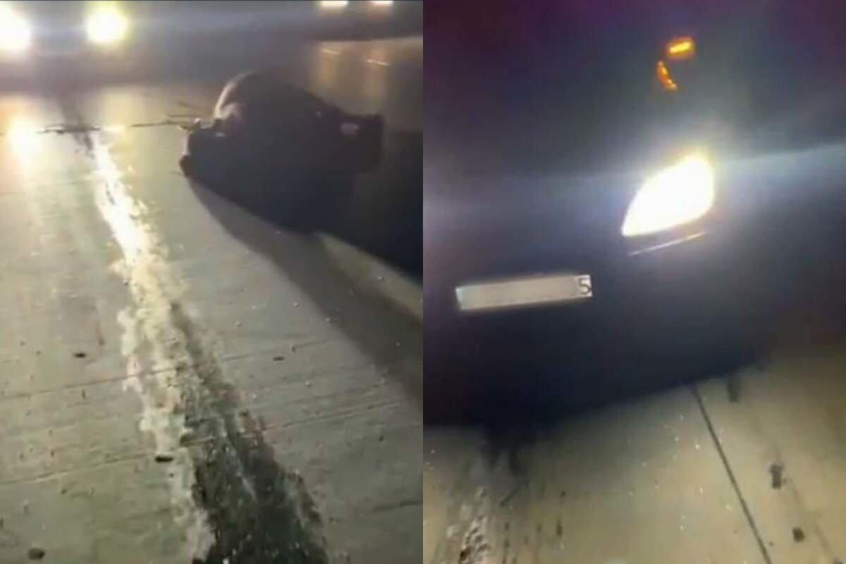 Пассажир легковушки скончался после ДТП с коровой в Алматинской области, фото-1