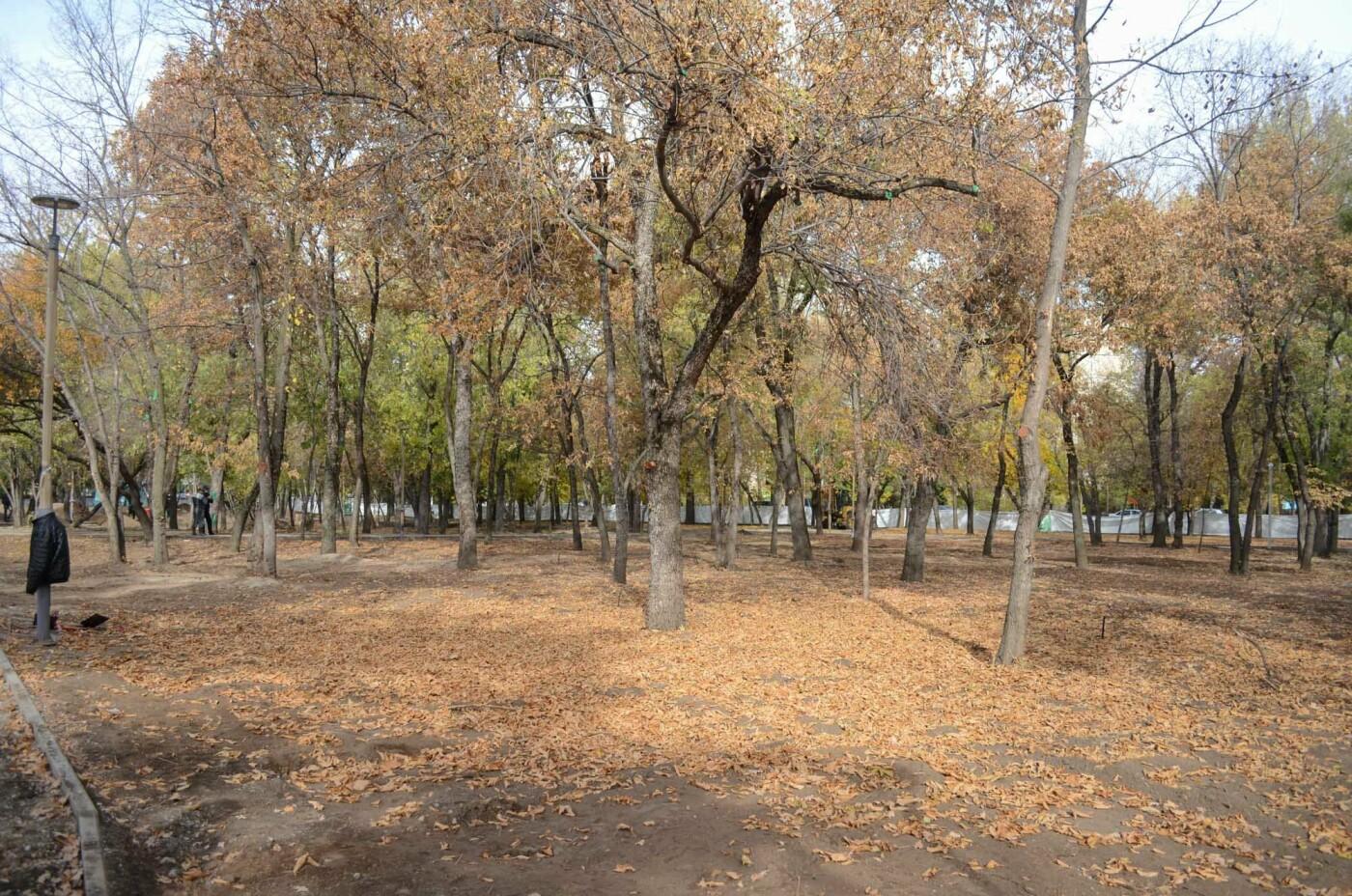 Как изменился парк «Дружбы» в Алматы после реконструкции, фото-11