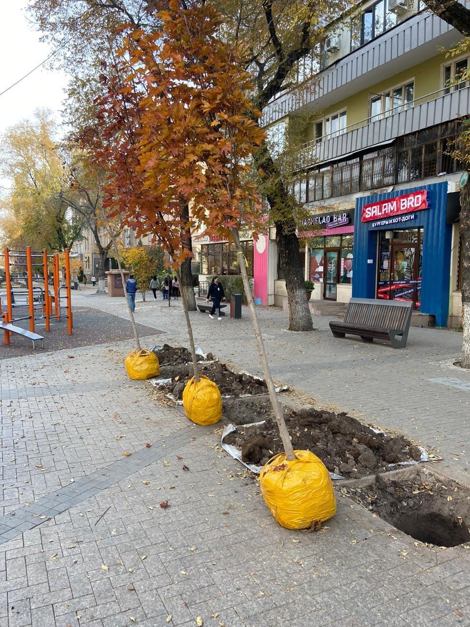 Фото акимата Алмалинского района