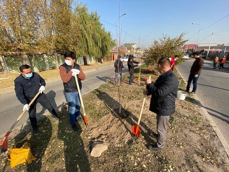 В микрорайоне Жаc-Канат в Алматы заложили новую аллею многодетных семей, фото-1