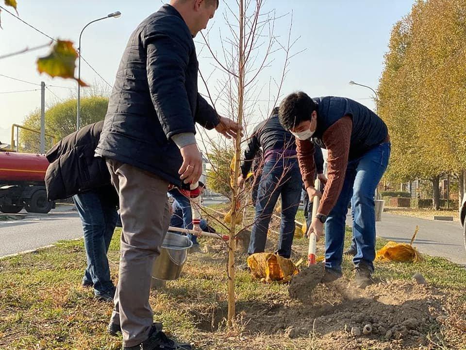 В микрорайоне Жаc-Канат в Алматы заложили новую аллею многодетных семей, фото-2