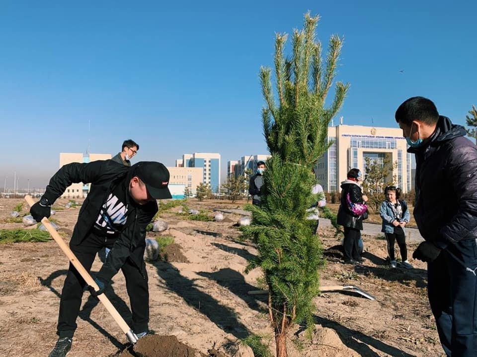 Высадку произвели близ здания акимата района в микрорайоне Шугыла
