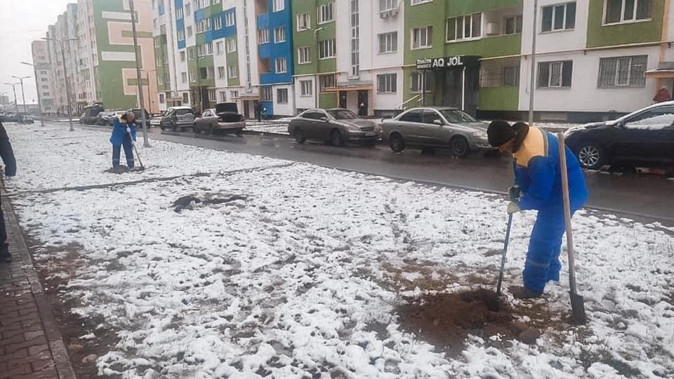 Житель микрорайона Шугыла сразу посадил деревья