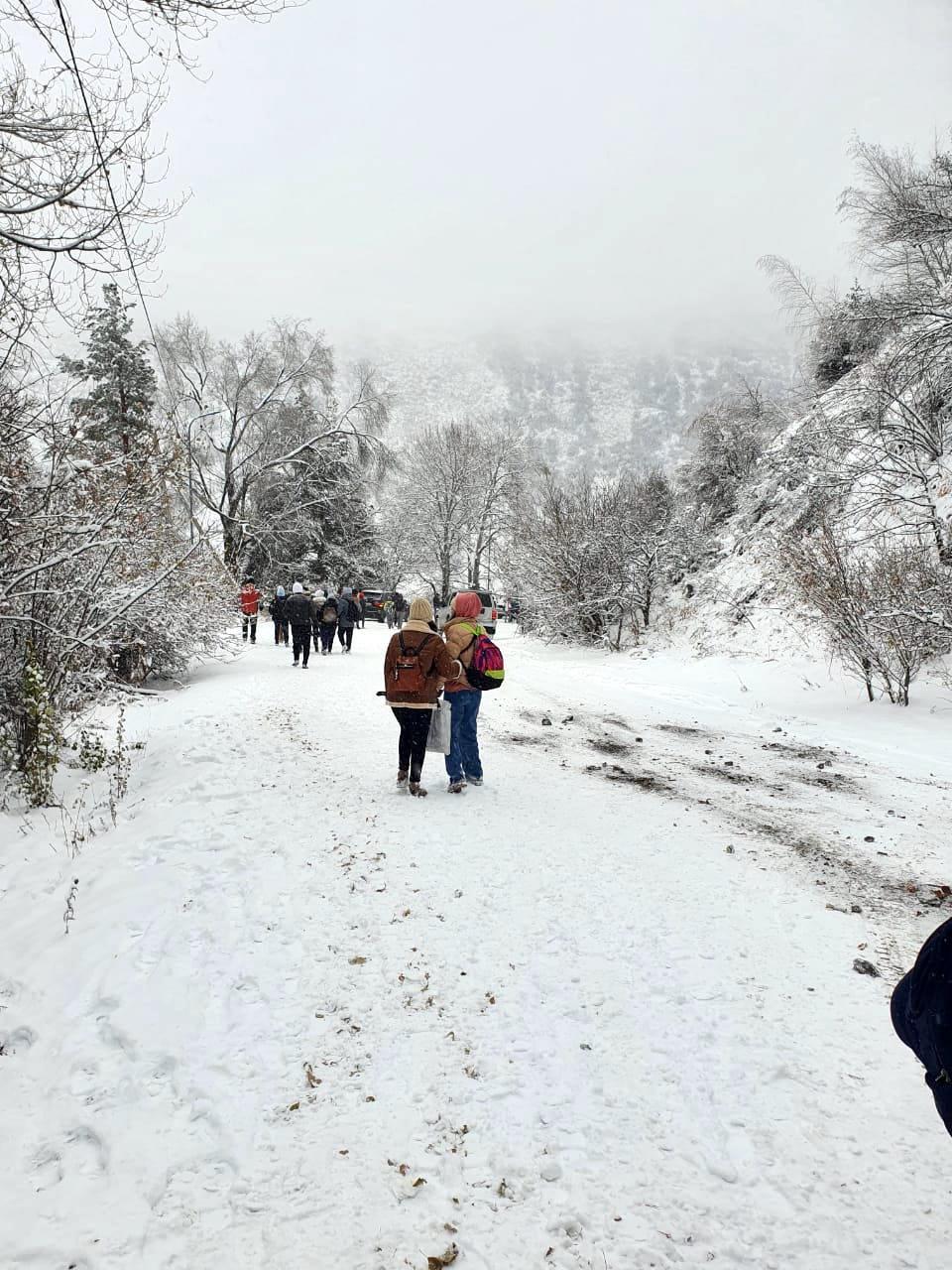 Спасатели помогли туристам спуститься до экологического поста