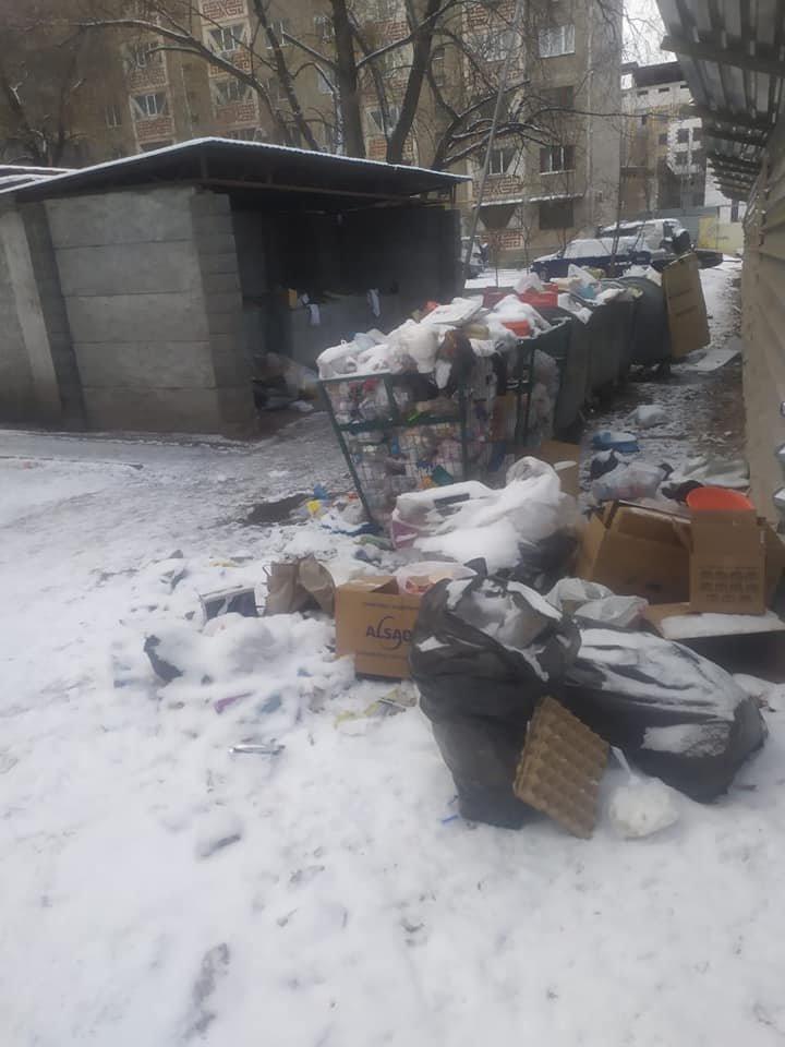 Мусоровывозящая компания вовремя не вывозила отходы в Алмалинском районе Алматы, фото-1