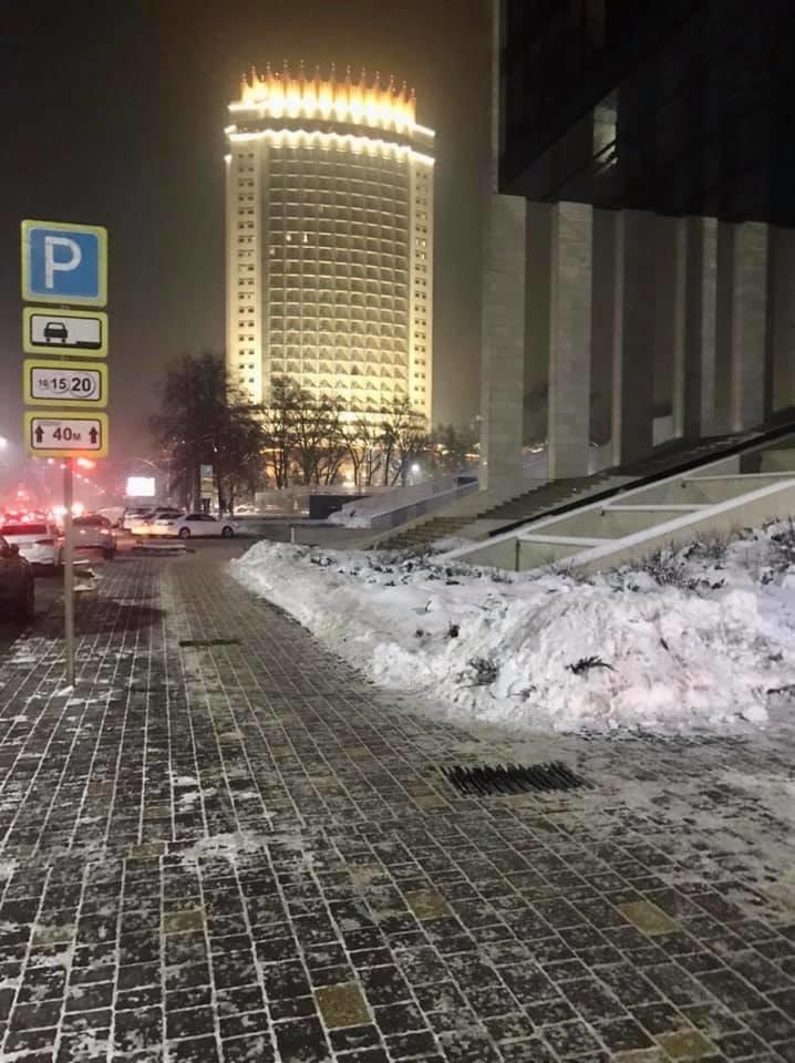 В акимате Алматы прокомментировали информацию о вырубке ели на пересечении Достык и Курмангазы, фото-3
