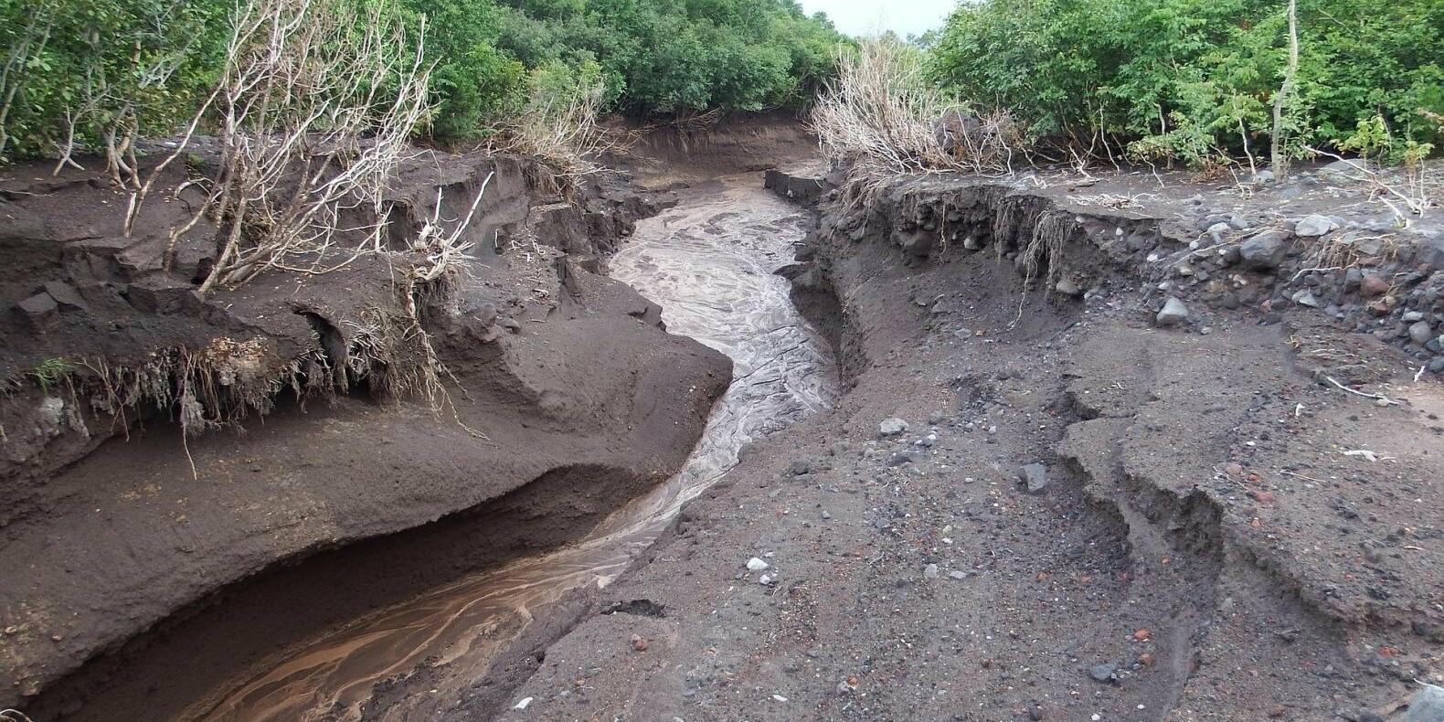 Мощный сель затопил участок дороги в Алматинской области