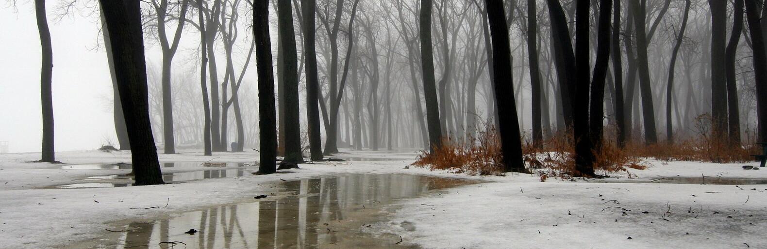 Дождь прогнозируют синоптики в Алматы 10 февраля